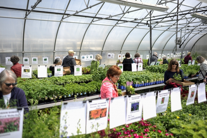 Oak Parkers Tuned Up Their Green Thumbs On May 5 7 And Headed Over To The Oak  Park Conservatory For The Friends Of The Oak Park Conservatoryu0027s Plant  Sale, ...
